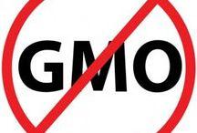 GMO / by Michele