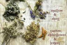 Herbal Product Ideas