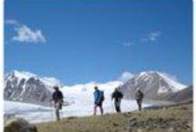 What to Do in Mongolia / What to Do in Mongolia.  www.mongolia-expeditions.com