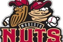Modesto Nuts / Get ready all you Nuts fans....The Modesto Nuts Season Opener April 10, 2014 at 7:05pm.