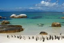 Beautiful Beaches / by Visit South Africa