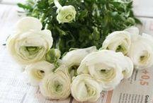 Flower bouquets / Majestic flower bouquets