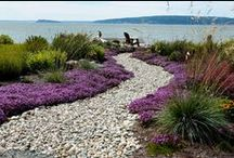 Gardens and Landscapes / Gardens and Landscapes that are part of projects designed by Designs Northwest Architects.