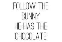 { c' e s t  p â q u e s } / Follow The White Rabbit