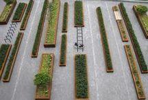 Dubious Gardening