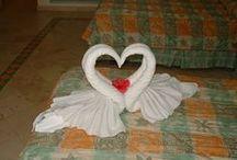 napkin and towel folds