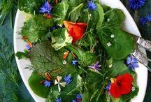 De verrassend eetbare tuin ! / Van salade tot cupcake, fleur het op met een lekker bloemetje !