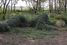 places I need to go to  / mud maiden at The Lost Gardens of Heligan in Cornwall England
