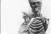 Anatomy / by Theodore Daley
