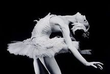 {swans} / Swan Lake, the ballet of enchantment, the ballet of swans