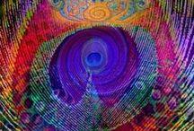 szinek és formák - colors and shapes