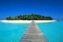Dream Come True Vacations & Resorts  / by Tawania Nubin