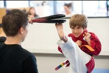 7 to 9-year olds (Core SKILLZ) Martial Arts in Lithia, FL / his board is about our wonderful kids martial arts program available at our school in Lithia, Florida.