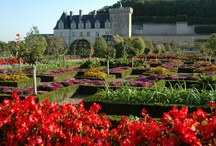 Loire Valley Day Trips