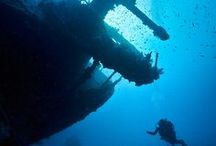 Photo: Underwater