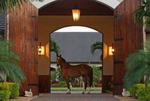 "Ecuries de Luxe / Luxury Stables ♔ Please follow the ""Pinterest Etiquette"" and pin respectfully.♔  / by Misha Alexis"