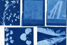 Cyanotypes & Sunprints / Sunprints made by members of Leicester Lo-Fi Photography