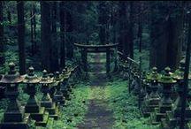 Shikoku 88 Temples