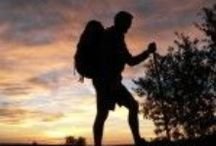 Camino: Guidebooks (online & in print) / Online guides, some in Spanish, some in English, to the Camino de Santiago in Spain.