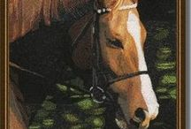 Horses / Designs of Horses and Pictures with Horses in them #HorseDesigns  #DesignsHorses