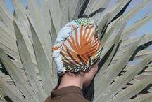 """Palmito"" scarves"