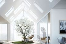 Dream Home / by Vyvyan Hammond