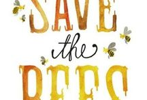 Save the Bees / August 2013 is NZ Bee Aware Month. Make yourself Aware of Bees! :)