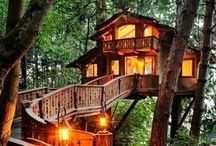 Casa sull'albero - tree hause