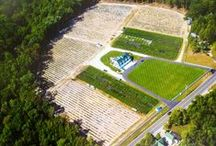 DiMeo Farms Properties / The DiMeo family owns some of the most beautiful farm land properties in New Jersey. We care as much for our farm properties as we care for our blueberry plants direct from A. DiMeo Blueberry Farms in Hammonton.