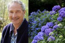 conseils, astuces et tutos pour les plantes et le jardin