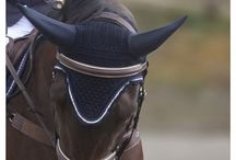 Hinterland / www.hinterland.net.nz  Hinterland makes high quality original designs in specialist Equestrian equipment. Leather tack for Show Jumping, Eventing and hunter competition.