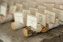 { Paper Trail } Wedding Invitations, Programs and Other Necessary Paper Goods / Things to make you wedding invites and other handouts standout!