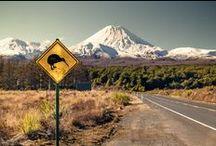 New Zealand:   My Homeland / by Mary Elcoat