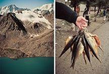 adventure | mountain |  tramping