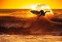 Surfing / by Alex Indigo