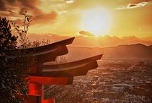 Japan / by Alex Indigo