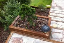 jardim vertical base em chapa cortem com cactos e suculentas