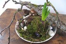 Nature Tables- Jahreszeitentische