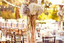 Wedding Venues Decorations / Accessories