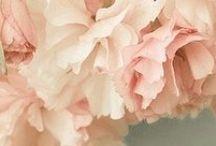 Flowers! :)