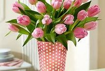 Tavasz - Spring