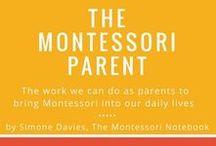 Parenting Insight