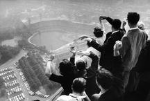 Baseball 4 Life! / by Nina Schreiner