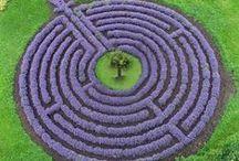 GARDEN IDEAS / Garden ideas.
