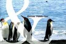 Antarctica / Scenery & Tourist attractions in Antarctic Continent & Peninsula