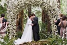 Weddings on the Olympic Peninsula / Whether you want a casual Pacific beach ceremony or a lavender-scented formal affair, the Olympic Peninsula is a unique wedding destination that offers a beautiful variety of outdoor and indoor venues.