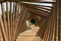 BAMBUS / Bambus - Ohebnost - Pružnost - Pevnost - Stavby - Kreativita - Design