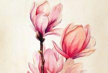 Flowers:  Magnolia / by Brenda B.