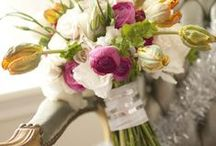 Simply Sweet Floral Arrangements / by Kath