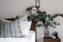 room. / plants and minimalism